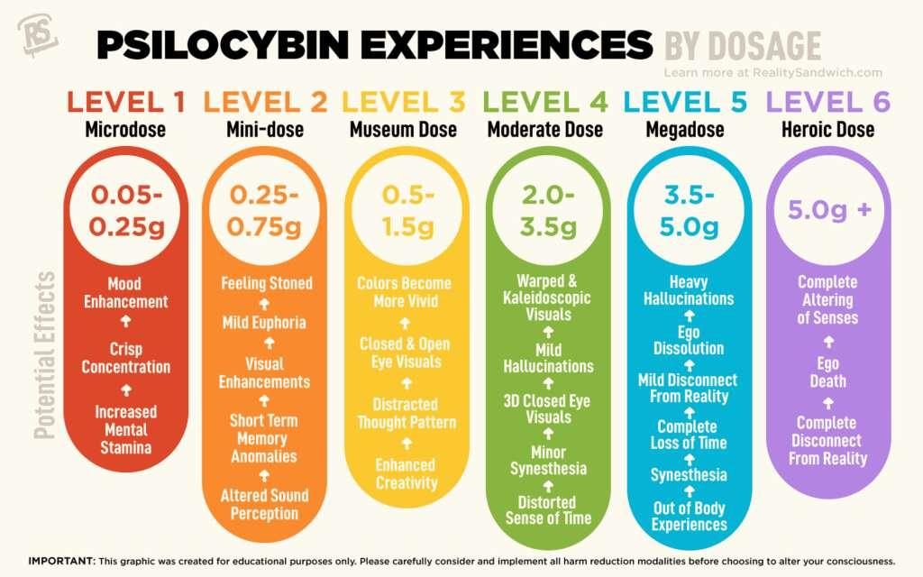 Psilocybin mushroom dosage chart