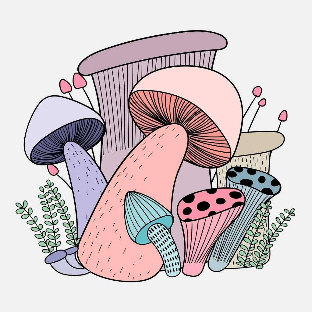 Cartoon art of multicoloured mushrooms